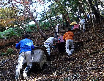 6トン超のゴミを回収!「第7回箕面の山大掃除大作戦」