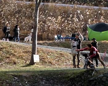 ガンドッグ(狩猟犬種)の競技会開催