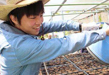 みどりのカーテン広げ隊・ゴーや種まきイベント開催!
