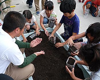 箕面産大豆を植えました!