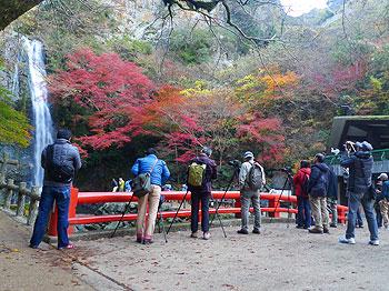 今が旬です、滝道の紅葉
