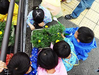 花壇をつくろう会と保育園児による花のお手入れ