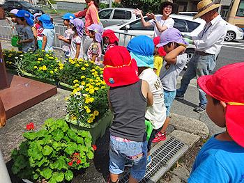 もみじ保育園の子どもたちが、街角のお花のお手入れ