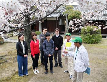 萱野三平記念館(涓泉亭)の桜
