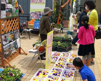 「春のマルシェ(市場)」が開催されました