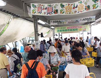 箕面産の夏野菜がいっぱい!