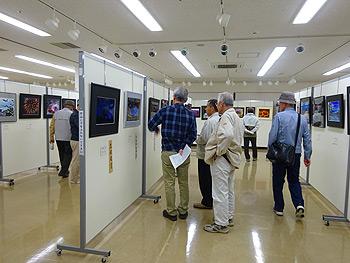 第60回箕面市民展、11月5日(日曜日)まで開催!