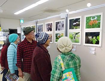 明治の森箕面国定公園の写真展、11月26日まで!