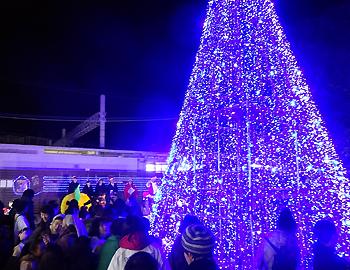 今年も一夜限りのツリー登場!第8回クリスマスツリーフェスタin箕面