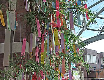阪急箕面駅に、今年も七夕飾り