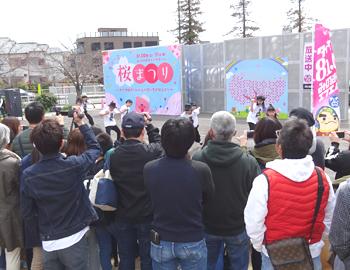 キューズ桜まつり(3月31日)