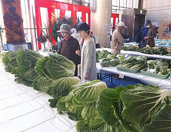 箕面の秋のビッグイベント!箕面産野菜がいっぱい!第44回箕面市農業祭