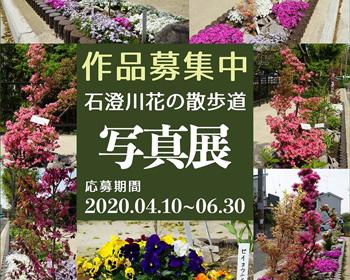 「石澄川花の散歩道」の写真募集中!