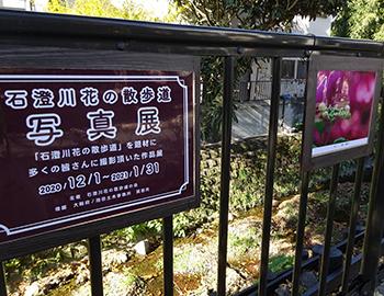 「石澄川花の散歩道」写真展、開催中(〜1/31)